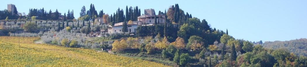 Vía Turín. Etapa 9: Radda in Chianti - Greve in Chianti